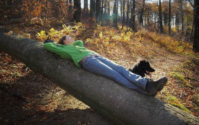 Woman_lying_tree_rural_outdoors_forest_dog